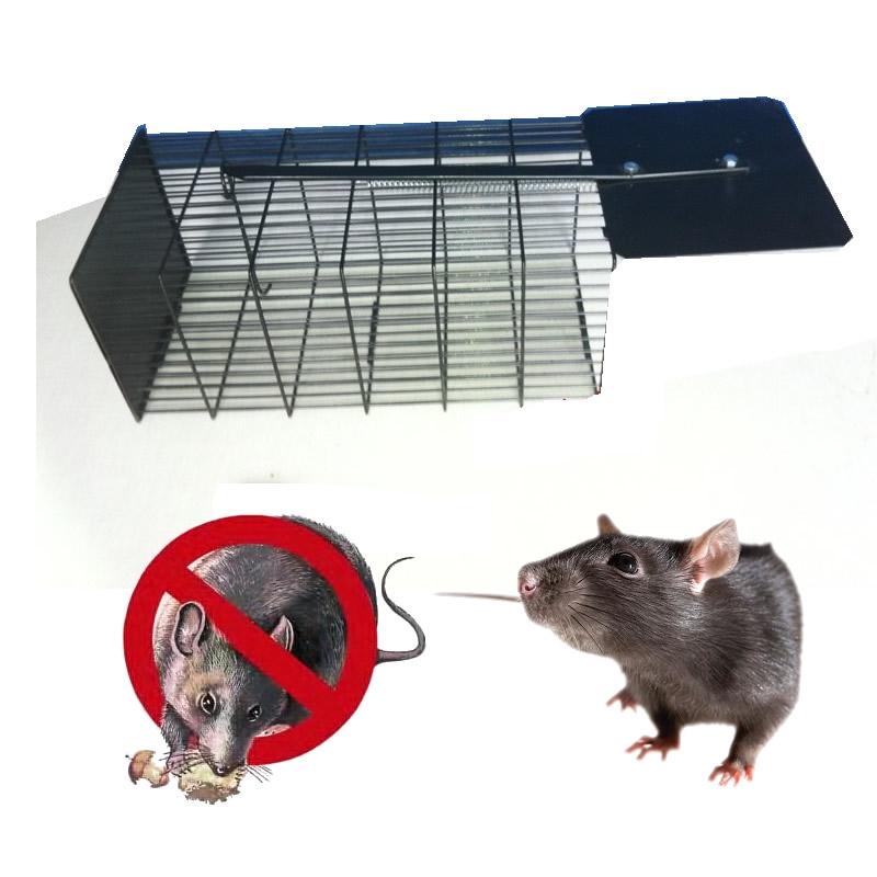 Trampa para cazar ratones elegant con esta trampa para ratones ya no necesitas matarlos with - Trampas para cazar ratas ...