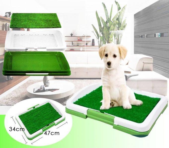 Puppy Potty Baño Ecologico Portátil Con Cesped Para Perros